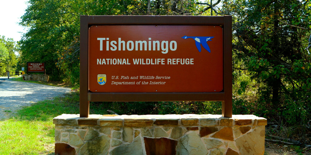 Increased hunting access announced at refuge