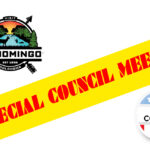 Council sets special meeting on city manager hiring